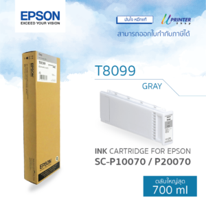 EPSON ink T809900 for P10070 P20070