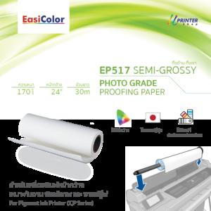 EasiColor EP517 24 Semi-Grossy
