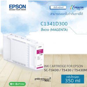 CT13T41D300_MAGENTA